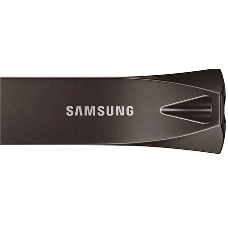 Samsung USB 3.1 Flash Disk Titan Gray 256 GB